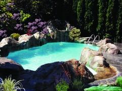 inground pool 20