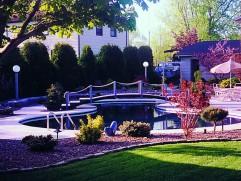 inground pool 6